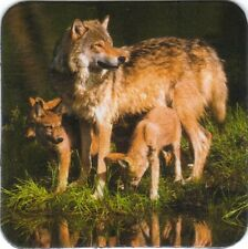 Kühlschrank - Magnet:: Wölfin mit Welpen - wolve family