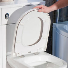 Luxury Soft Close Heavy Duty D-shape Toilet Seat With Top Fixing Hinges Bt20