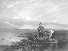 Sea Coast Shore YOUNG BOYS KIDS SHRIMP PRAWN FISHING ~ 1849 Art Print Engraving