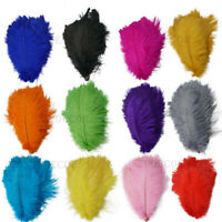 5/20/100pcs beautiful natural ostrich feather 6-24 inches / 15-60 cm 13 colors