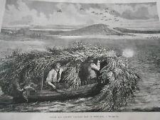 Gravure 1876 - Chasse aux Canards dans le Maryland