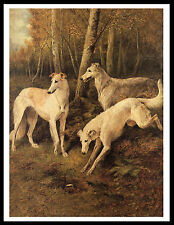 BORZOI DOGS CLASSIC IMAGE LOVELY VINTAGE STYLE DOG PRINT POSTER