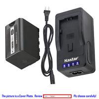 Kastar Battery Super Fast Charger for Panasonic AG-VBR59G & Panasonic AJ-UX90