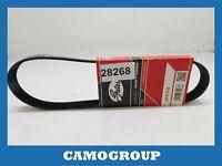 Belt Service V-Ribbed Belt Gates 745MM AUDI A2 VW Lupo Seat Ibiza Skoda Fabia