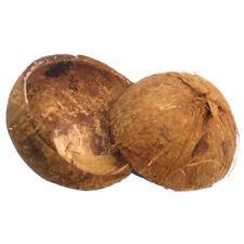 4 x Natural large Coconut Shells for Food Bowl, Decorations, Sky Walker X 3