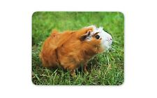 Ginger Guinea Pig Mouse Mat Pad - Cute Rodent Rat Animal Computer Gift #15574