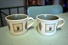 Pfaltzgraff USA Naturewood Garden Herbs Leaves Flat Cups Mugs Set of 2 EUC