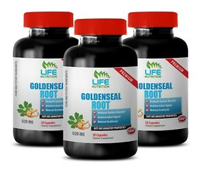 anti microbial supplement - Goldenseal Root Extract 520mg - sinus relief 3B