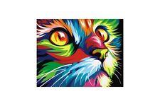 Vernice da numeri KIT Rainbow Cat