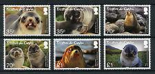Tristan da Cunha 2017 MNH Subantarctic Fur Seal 6v Set Seals Wild Animals Stamps