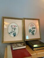 "Pair Of Edward Art Products Flower Prints Framed And Matted 16.5x19.5"" #5705"