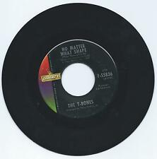 T-BONES - NO MATTER WHAT SHAPE - LIBERTY 55836 - 60'S ALKA SELTZER INSTRUMENTAL