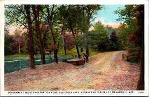 Vintage 1920's Trout Propagation Pond, Elk Creek Lake, Menomonie WI Postcard