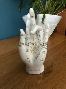 Palmistry Palm Reading Hand Fortune Telling Chiromancy New & Boxed 18cm
