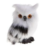 Miniature Collection Animal Model Owl Figure Model Decorations Art Hobby