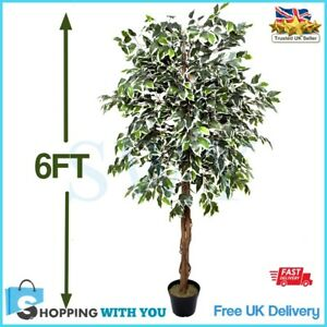 Tall Artificial Plant 6Ft Large Fake Tree Ficus Tropical Decor Indoor Outdoor