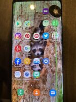 Samsung Galaxy S9+ SM-G965 - Black (AT&T) -  Works Great