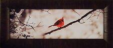 CARDINAL III by Justin Spivey 9x21 FRAMED PRINT Song Bird Branch Winter Snow