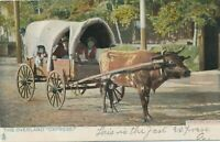 The Overland Oxpress Tuck Postcard – udb – 1905