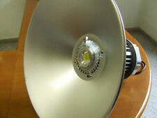 FARO A LAMPIONE  MONOLED DA 100 WATT  6500 KELVIN  AC 220 VOLT  IP 68
