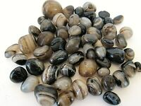 Black Honey Onyx Tumbled Stone 20mm Qty1 Reiki Healing Crystal by Cisco Traders