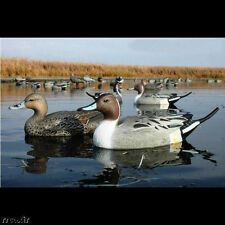 AVERY GREENHEAD GEAR GHG LIFESIZE PINTAIL DUCK DECOYS WEIGHTED KEELS 6 NEW!