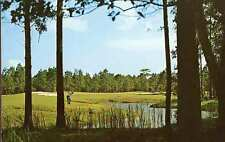 PAWLEYS ISLAND SC Sea Gull Golf Club Golfer postcard