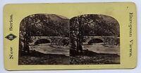 Pont Da La Source San Michel Francia Stereo Albumina Ca 1865
