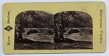 Pont de la source Saint Michel France Stereo Albumine ca 1865