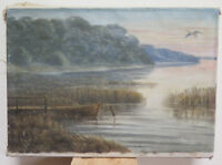 Painting oil On Linen Painting Signed landscape Lakesdie Denmark Europe R95