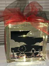 Snoopy & Charlie Brown Peanuts Glass Block Decor Light Lamp