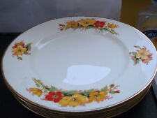 1940-1959 Alfred Meakin Pottery Dinner Plates