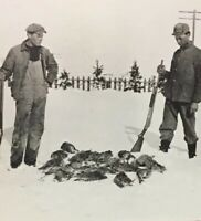 Postcard, Hunters, Grouse, Alberta Canada, Vintage P23