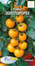 graines de tomates «La noisette  d'or» - Potager Légumes Plantes - 40 graines
