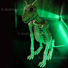 """29"""" Tamaño Real De Halloween Esqueleto Sentado Spike huesos Perro Poseable Decoración"""