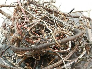 Large Selection of Vintage Wire from Transmitters, etc.  Over 7 1/2 Pounds.