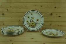 Arklow Brendan WILD FLOWERS (6) Salad Plates   Erin Stone   Ireland No. 8162