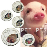 WR New Year Christmas Gifts 2019 LUNAR Year Of PIG Silver Collection Coin 5pcs