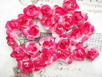 Mini ROSE 24 Pack PAPER approx 20mm FUCHSIA & WHITE with Wire Stems MH ConA