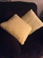 2 for 1 Light Yellow Pillows , Great For Decorating Any Room.
