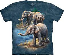The Mountain Unisex Adult Asian Elephants Animal T Shirt Xx-large 1059794