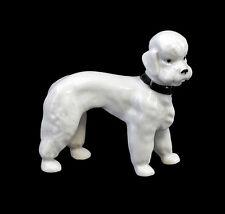 Porzellan Figur Hund Pudel mit Halsband weiß Wagner & Apel H7,5cm 9942436