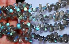 "Full 8"" Strand Fine Quality LABRADORITE Drilled Faceted PEAR Briolette Sale Lot."