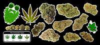 Weed Marijuana Cannabis Vinyl Sticker Bud Pack #2