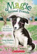 Evie Scruffypup's Big Surprise (Magic Animal Friends #10)  (ExLib)