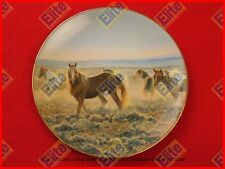 """Proud Sentinels of the American West """"Youngblood"""" Collectors Plate by Knowles"""