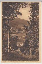(30463) AK Bad Flinsberg (Swieradow-Zdroj), Blick vom Haumberg, 1931