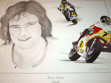 Barry Sheene Heron SUZUKI RG500 OMAGGIO n. 7 Chris Dugan motoring-man2