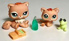 ✨Littlest Pet Shop✨Cat/Kitten Sisters #1948 & Variant w/Accessories✨AUTHENTIC✨