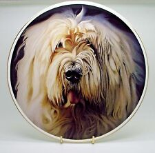 ~  Old English Sheepdog ~ Fine Bone China Plate